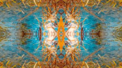 Stills art stream - spiritofnature 2