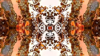 Stills art stream - beohemianpoem 1b