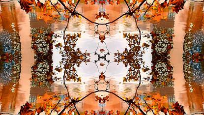 Stills art stream - bohemianpoem 1a