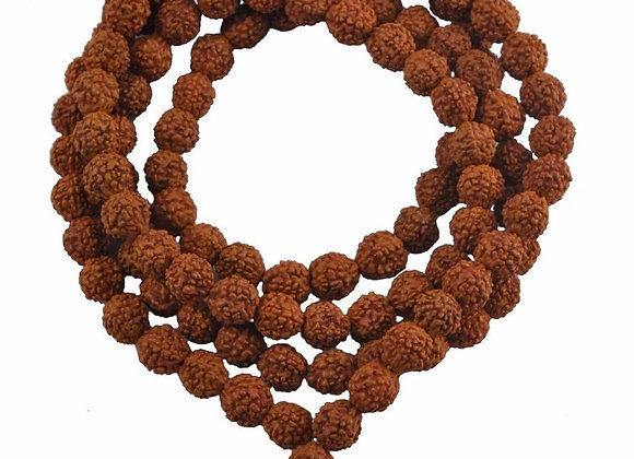Malas en Rudraksh - 108 perles
