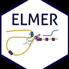 elmer_160.png