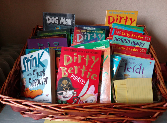 A selection of books from Robinstown NS library