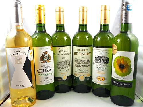 金賞授賞白ワイン6本セット