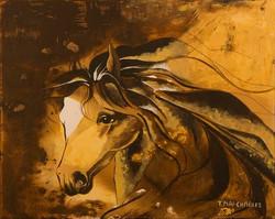 Cheval Bicolore 2-Bicolor Horse 2