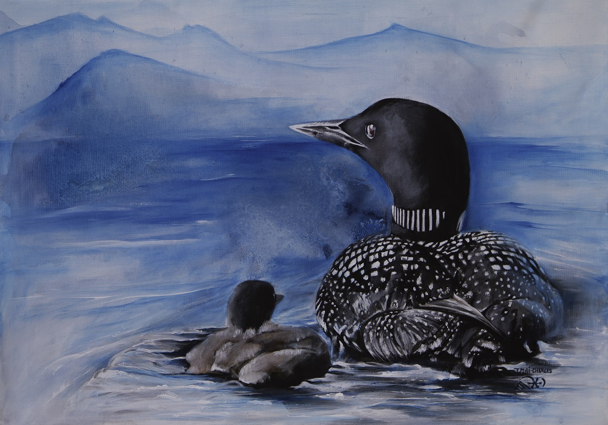 Plongeon Huard-Loon