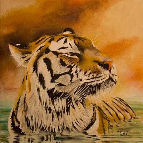 """'Tigre dans l'eau"""""""