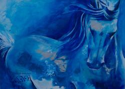 Cheval turquoise