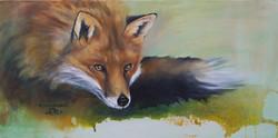 Renard -Fox