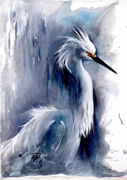 Aigrette Neigeuse-Snowy Egret