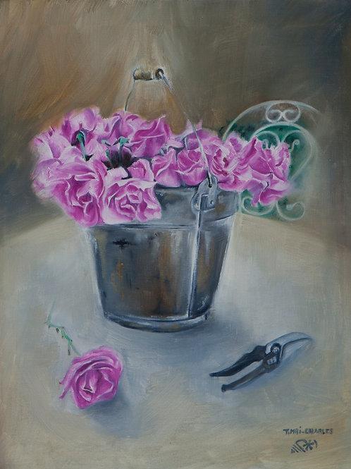 """Roses du jardin"""