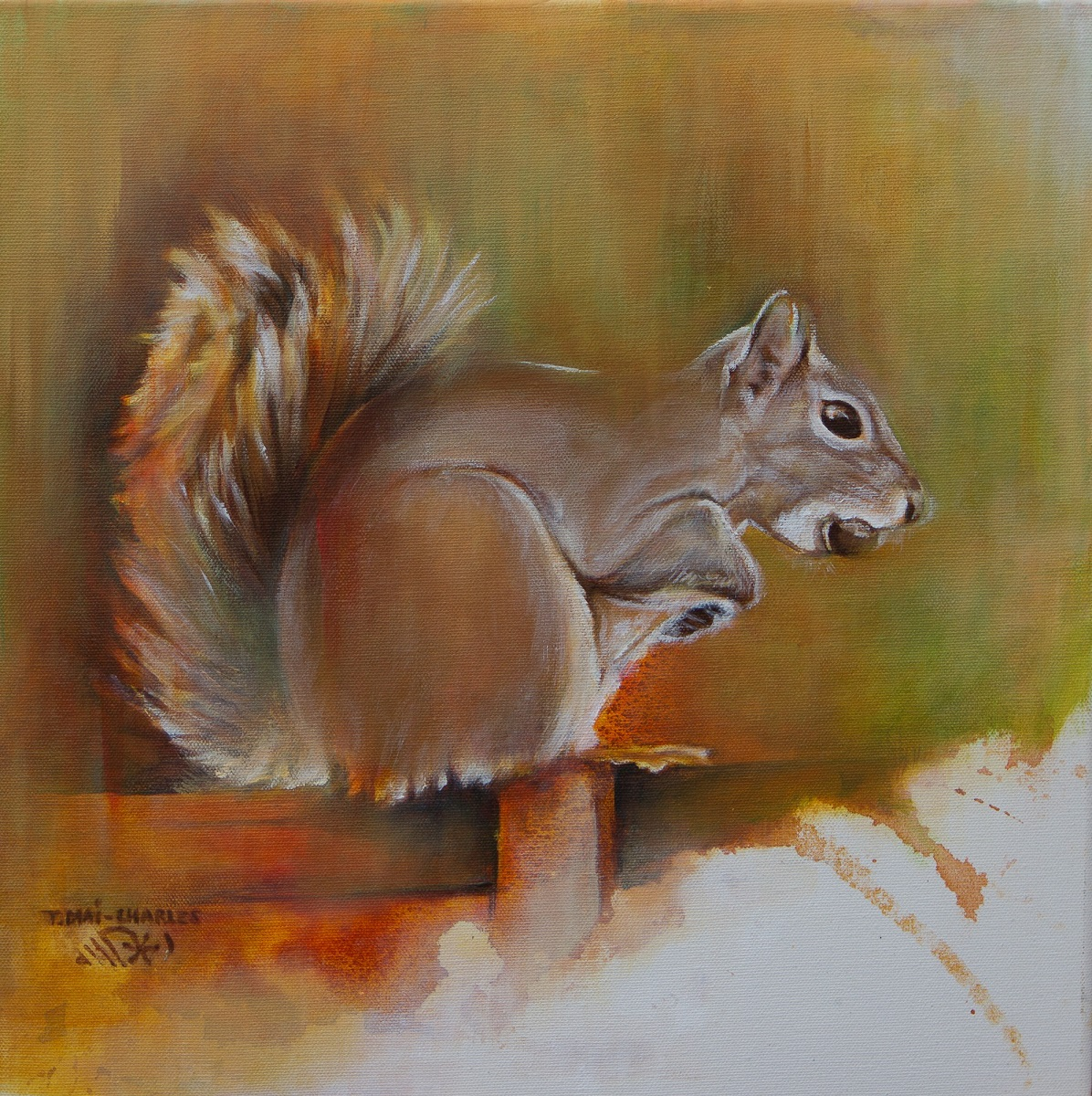 Ecureuil Roux -Red Squirrel