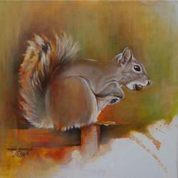 Ecureuil Roux -Red Squirrel