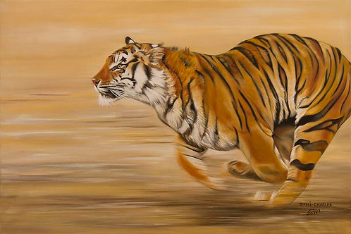 """Tigre en pleine course"""