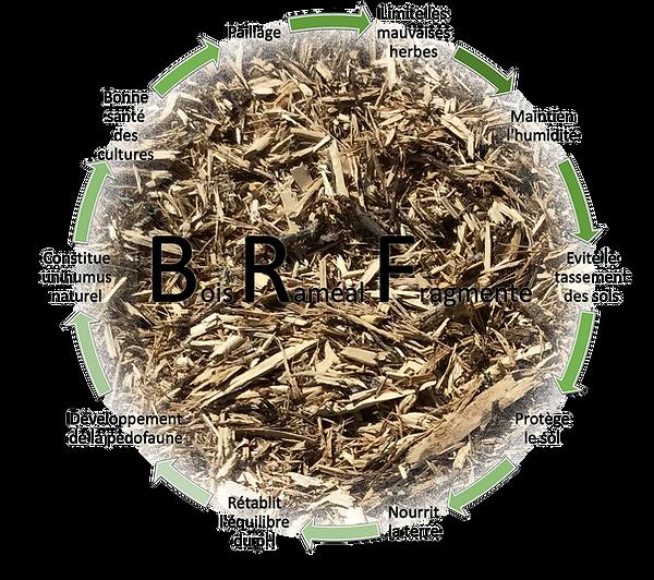 Bénéfices, avantages du bois raméal fragmenté
