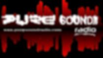 Pure_Sound_Radio_-_Logo.png