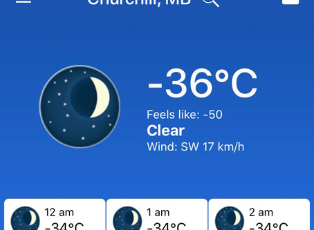 -36C feels like -50 in Churchill, MB right now
