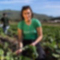 woman-gleaning-300x300.jpg