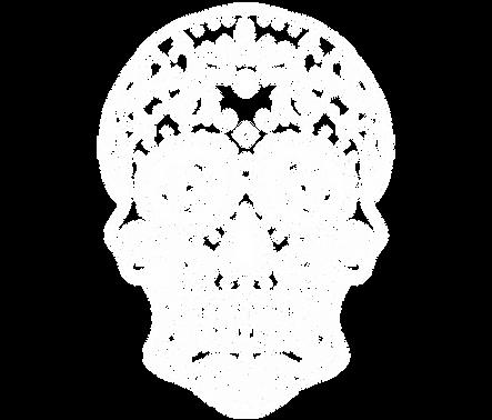 TexiKo Skull