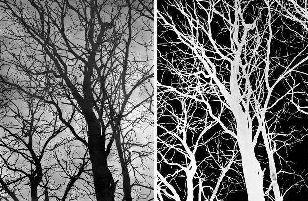 SERSE, Astrato Naturale, 2006