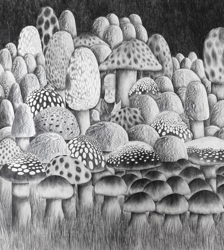 DENNIS TYFUS A Kind Of Magic, 2021 pencil, and graphite on paper 270 x 240 cm