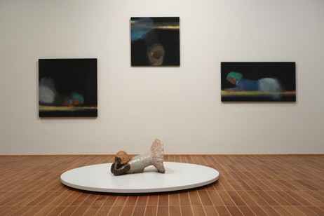 installation view Kunstmuseum Basel, 2019