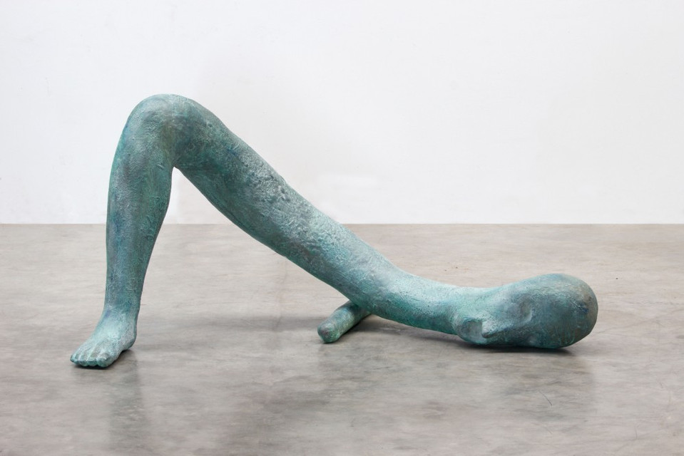 HENK VISCH, The right foot of a man of words, 2016