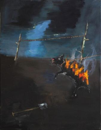 AARON VAN ERP, Brandende hond bij nacht, 2011
