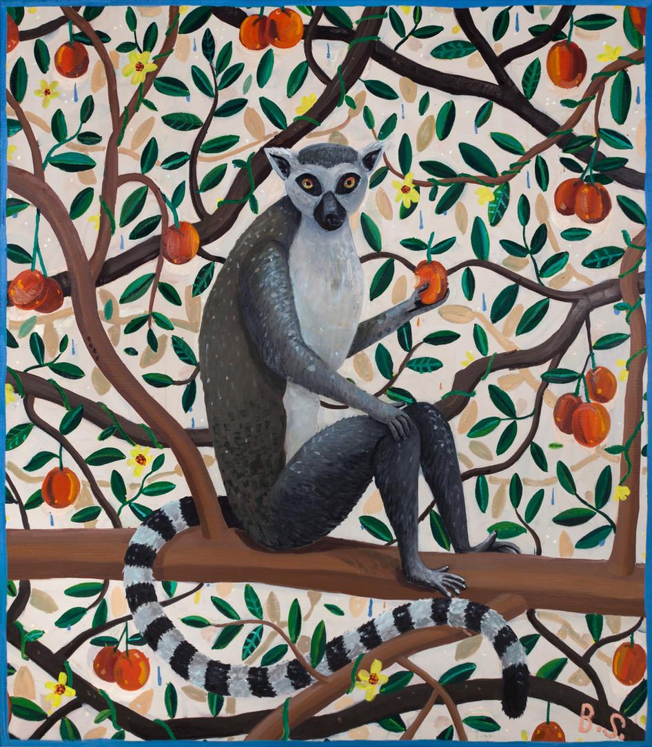 BEN SLEDSENS, Ringtail Lemur, 2018