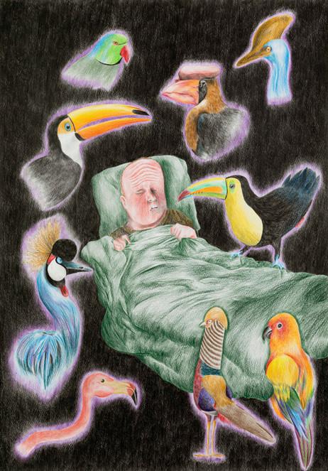 DENNIS TYFUS The Birds, 2020 colored pencil on paper 100 x 70 cm 110,3 x 80,8 x 4 cm (frame)