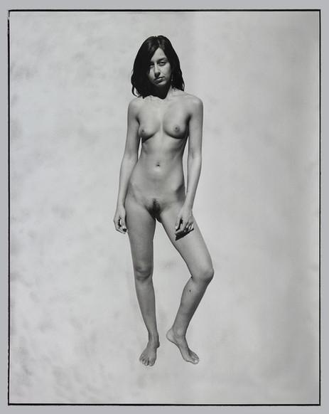ED TEMPLETON Tree, Silver photograph, spray paint 130 x 109 cm