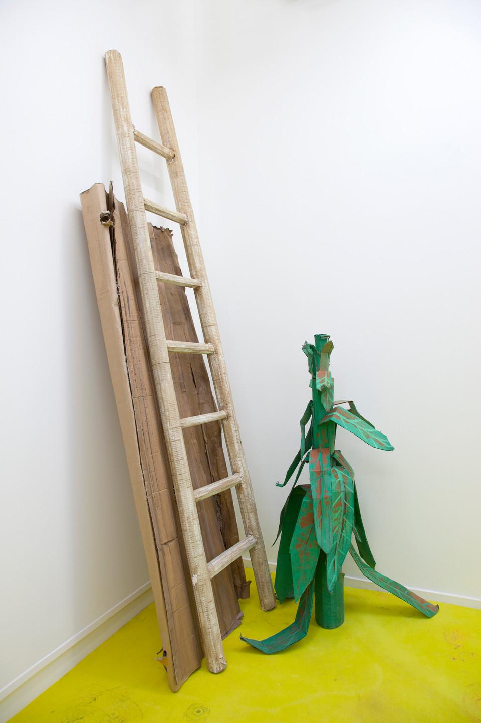 RINUS VAN DE VELDE,  Prop, Escape, Ladder, Plant & Board, 2017