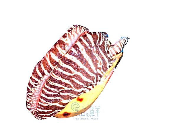大潺螺 椰子螺(斤)