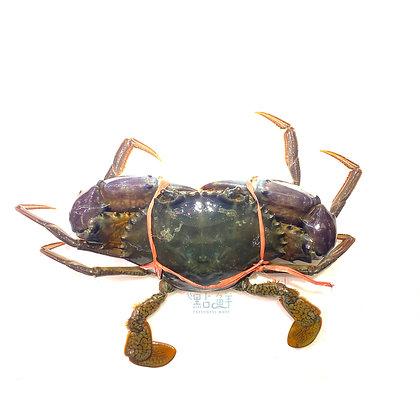 肉蟹(1斤/ 1catty)