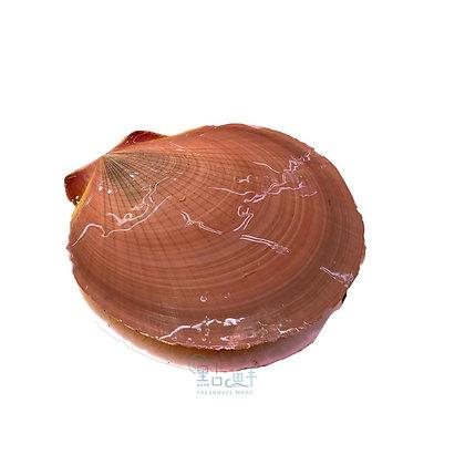 紅毛鏡(1斤/ 1catty)