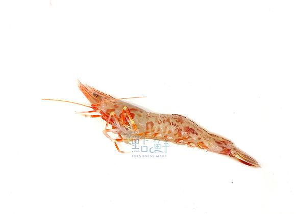 赤米蝦(斤)