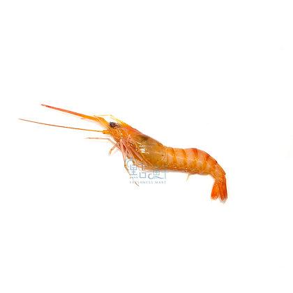 紅蝦 (1斤/ 1catty)