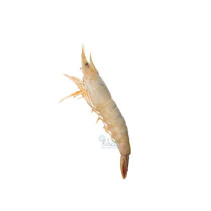 蝦頭(半斤/ 0.5catty)