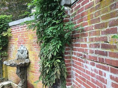 garden wall copy.jpg