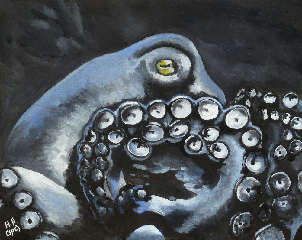 Pip's Octopus