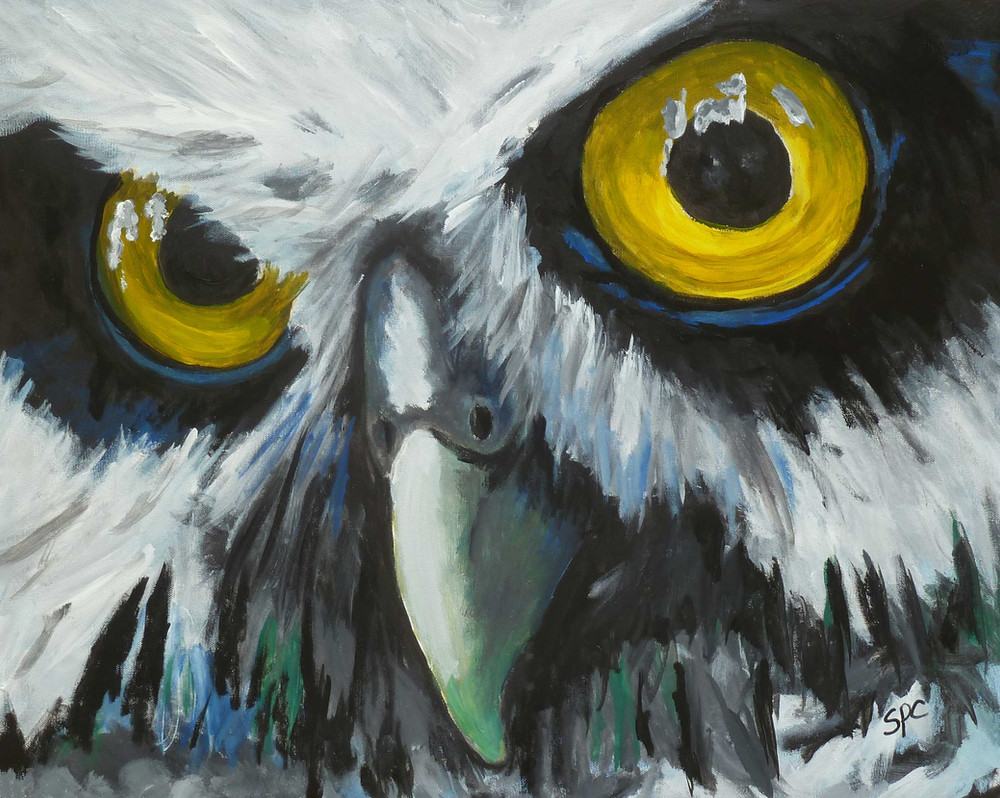 Heidi's Owl