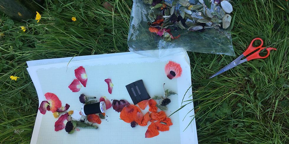 Backyard Social - Glass Box Project - Invitation