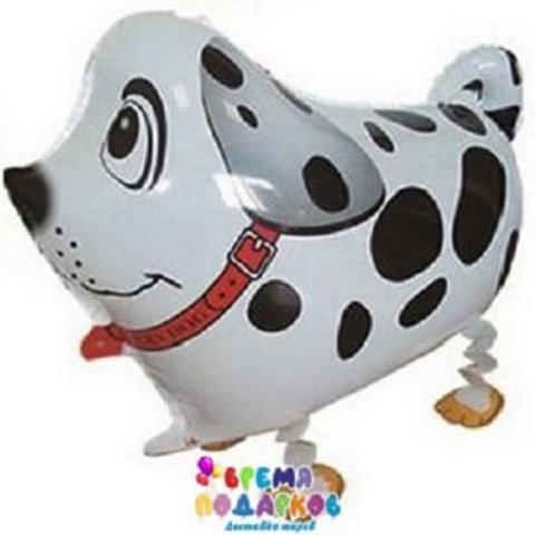 Воздушный шар (61 см) Ходячая Фигура, Собака далматин, Белый