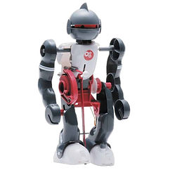 Jr-Scientist-Tumbling-Robot-600x600.jpg