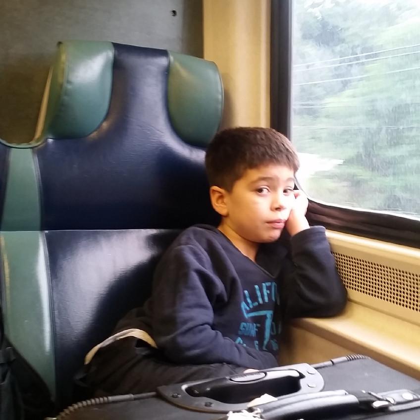 Train to Brewster