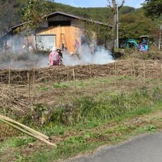 雑草に覆われていた場所も整備