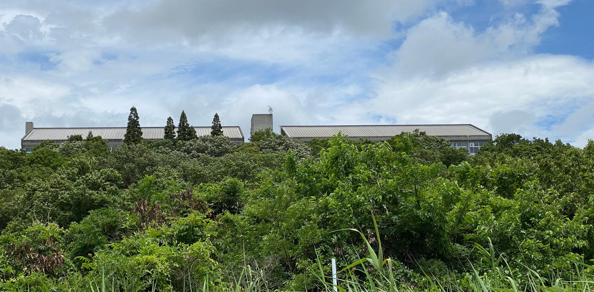 利根川から校舎を見る