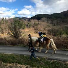 ご近所の馬も応援に来てくれました