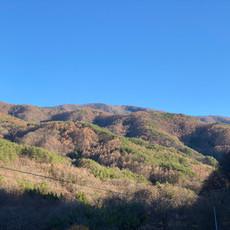 こんな山に囲まれた長閑な集落です