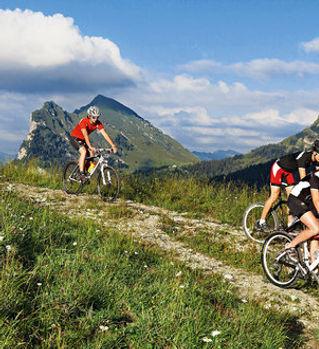 Mountainbiker_gallery_6x2.jpg
