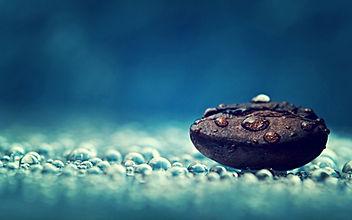 coffee bean water drops